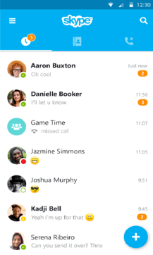 Skype手机版