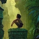 奇幻森林—第一篇